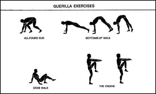 APFT Guerrilla Exercises List