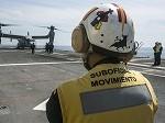 American Osprey Lands on Spanish Ship