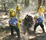 Rugged Terrain Doesn't Stop California Guard Soldiers from Humbling the Humboldt Fire