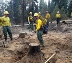 Oregon Guard Airmen and Soldiers Conducting Fire Cleanup as Blazes Burn in five Western States