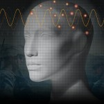 'Phantom Head' May One Day Take Guesswork Out of EEG Monitoring