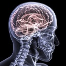 Traumatic Brain Injury Awareness Month Highlights Resources