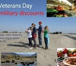 Veterans Day Deals Available to Troops