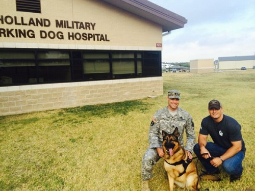Military Working Dogs and Veterinary Corps