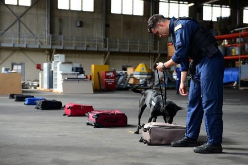 Coast Guard explosive detection team