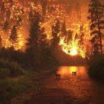 Hostile Fire/Imminent Danger Pay (HFP/IDP)