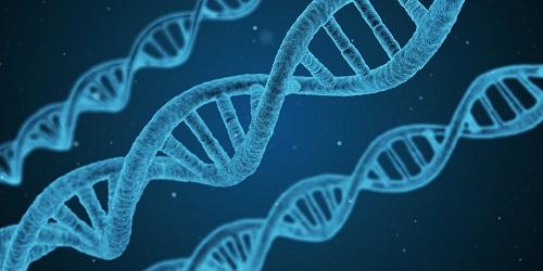 Genetics Clinical Study