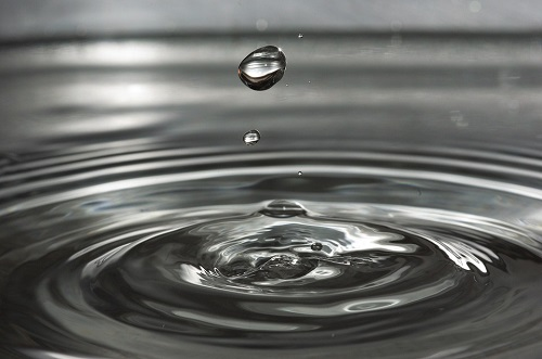 Next-Generation Water Purification System