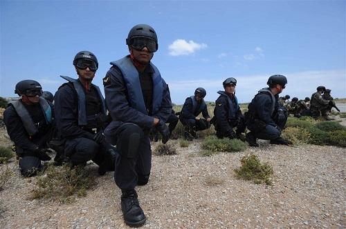 International Military Education and Training