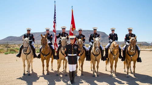 Marine Corps' Mounted Color Guard