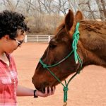 Reservist Helps Treat PTSD With Equine Therapy
