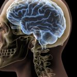 Army Scientists Discover Mathematics Of Brain Waves That Could Help PTSD