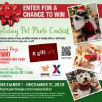 Festive Pets Can Earn Shoppers $3,000 During Holiday Photo Contest