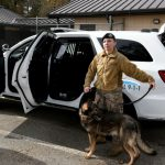 New Defender SUVs Provide Cooler, Smoother Ride for Canines
