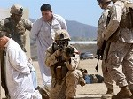 1st Marine Division Demonstrates Its Amphibious Capabilities for the Secretary of Defense