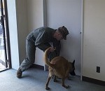 Military Working Dogs Benefit Military Police