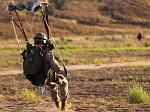 Recon Conducts Military Freefall Training